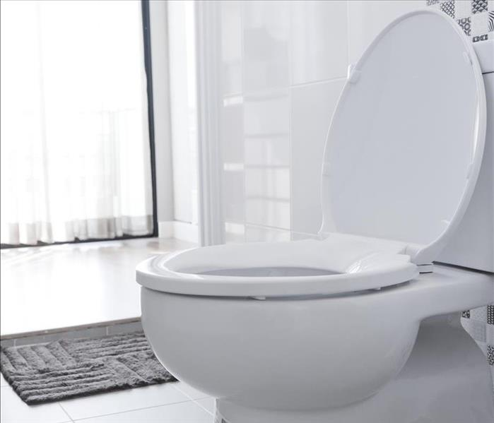 White toilet bowl in the bathroom