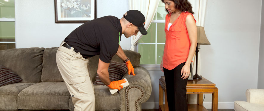 Arlington Heights, IL carpet upholstery cleaning