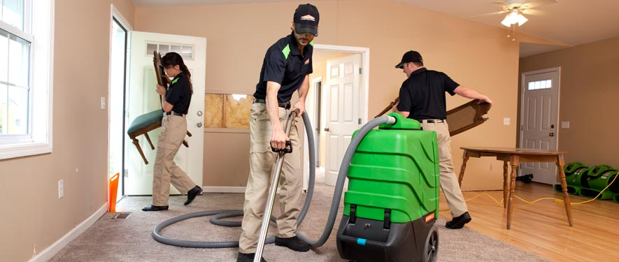 Arlington Heights, IL cleaning services
